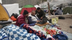 Anti-government protesters use the internet on a laptop in Tahrir Square in Cairo on February 7