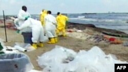Очищувальні роботи на пляжі після виливу нафти у води Мексиканської затоки