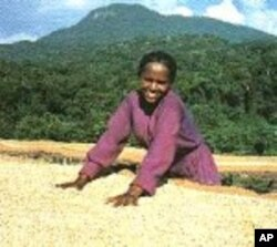 The US Chamber of Commerce is encouraging American businesses to invest in Ethiopian agriculture, which includes coffee and tea production