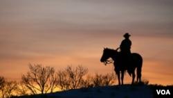 Los vaqueros prefieren las botas altas, para la protección y con puntas, porque encajan mejor en los estribos.