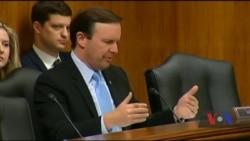 Останні слухання у Сенаті: військова та інша допомога Україні має бути пріоритетом політики США. Відео