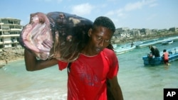 "A Somali fisherman carries a fish called ""Yapuri"" as he walks from Hamarweyne beach in Mogadishu, Somalia, November 22, 2008."