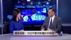 媒体观察:习近平要求新疆反恐维稳