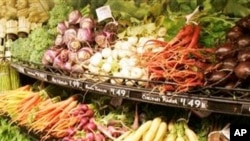 Development Expert Says Africa Can be Food Self-Suffient