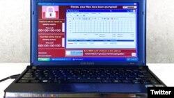 این لپ تاپ حاوی ۶ ویروس کامپیوتری خطرناک است. ولی تا وقتی که آن را به اینترنت وصل نکردید خطری ندارد.