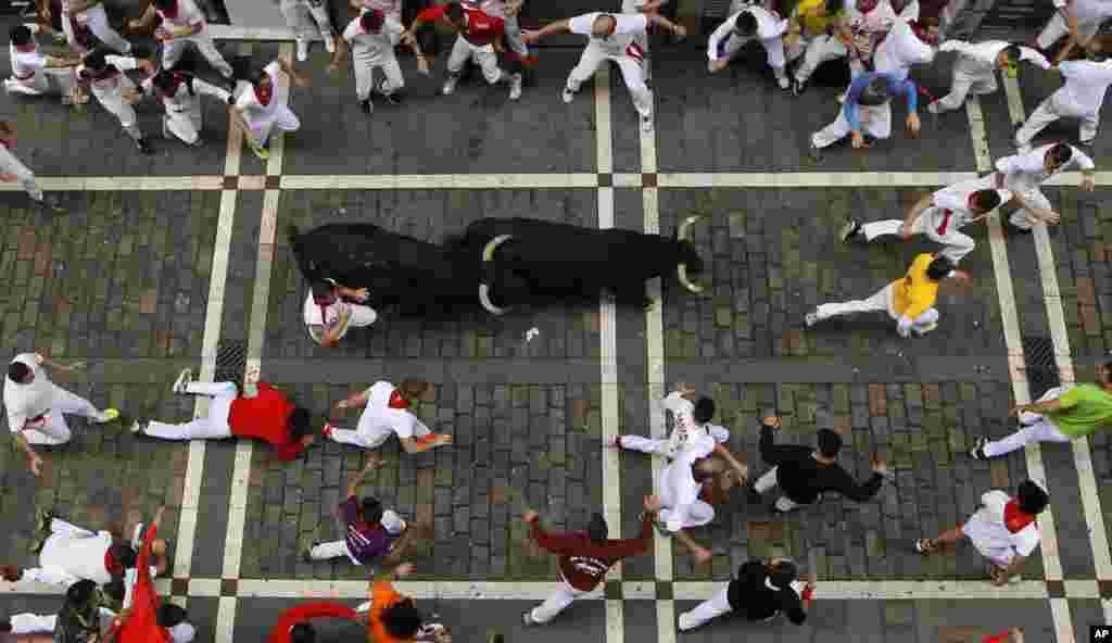 فستیوال ۸ روزه گاوبازی در سن فرنین اسپانیا که هر ساله هزاران نفر از سراسر دنیا را به خود جلب می کند.