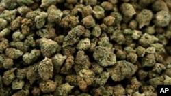 Marijuana ေဆးေျခာက္