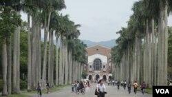 台灣大學校園 (美國之音張佩芝攝)