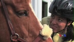 Hồi phục chức năng bằng trị liệu cưỡi ngựa