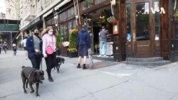 Coronavirus Pandemic Guts New York Restaurants