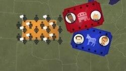 미국의 대통령 선출 과정: 8. 대의원