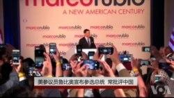 美参议员鲁比奥宣布参选总统 常批评中国