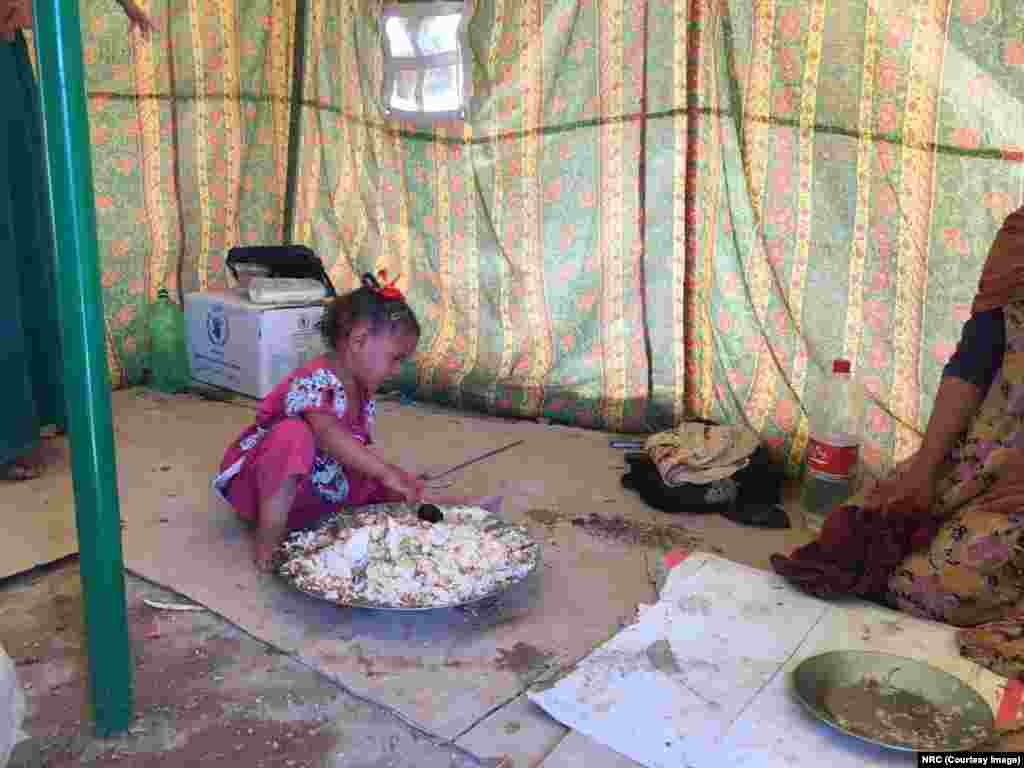 "Yasmin is Yousra's sister. ""She is so tired that she can only cry,"" says her mother. She arrived with her parents and siblings in Al Fallujah camp in Ameriyat Al Fallujah during the early morning hours. Neighbors had cooked them this food."