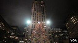 El pino noruego del Rockefeller Center tiene 23 metros de altura.