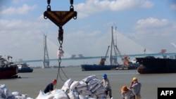 中国江苏省南通港正在装卸从巴西进口的大豆产品(2019年9月19日)