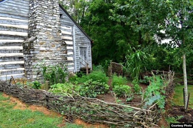 A recreated slave garden at Smithfield Plantation in Virginia. (Photo courtesy of Historic Smithfield Plantation)