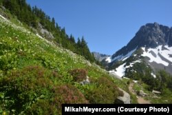 Hiking the Cascade Pass trail was like walking from summer into winter.