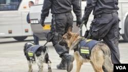 特警牵警犬在天安门广场巡逻。(2016年3月3日 美国之音金子莹拍摄)