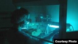 Sebuah teknik baru yang mengikat molekul khusus untuk untai tunggal DNA memungkinkan peneliti untuk urutan merangkai genome Neanderthal terkait Denisovan dari sebuah fragmen kecil dari tulang jari kuno. (Foto: Max Planck Institute untuk ilmu Antropologi Evolusi)