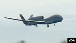 Salah satu pesawat tak berawak Amerika (foto: dok). Presiden Obama hari Senin (30/1) mengakui secara terbuka serangan pesawat tak berawak AS atas militan di Pakistan.