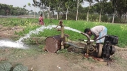Pond Water Brings Relief to India's 'Arsenic Belt'