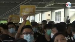 Nan Honk Kong, Aktivite yo Reprann Timidman