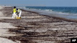 Para petugas tampak tengah membersihkan minyak di pantai Pensacola, Florida, akibat insiden tertumpahnya minyak dari Teluk Meksiko, 23 Juni 2010 (Foto: dok). Perusahaan Halliburton Energy Services didenda $200 ribu setelah mengaku bersalah menghancurkan bukti terkait insiden tersebut, Kamis (25/7).
