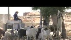 """Izrael – Palestinci: Gradnja novih naselja """"judaizacija Jerusalema"""""""