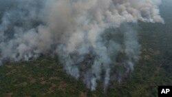 巴西亞馬遜熱帶雨林野火。