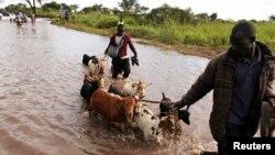 Wani mutum da awakinsa yana ficewa daga wani yanki da ambaliyar ruwa ta daidaita a Sudan Ta Kudu