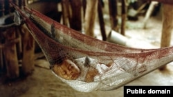 "A Honduran baby sleeps in a hammock. The word comes from the Taino word hamaka of the indigenous people of Hispanola. Originally, it meant ""stretch of cloth."""