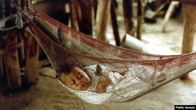 a honduran baby sleeps in a hammock  the word  es from the taino word hamaka english words borrowed from the americas  rh   learningenglish voanews