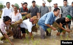Hun Sen planting rice in 2008. He styles himself as a humble leader of a party representing ordinary Cambodians. REUTERS/Stringer