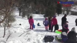Fun With Snow: Sled Riding!