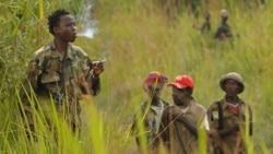 Ituri: au moins 10 membres d'un groupe armé tués