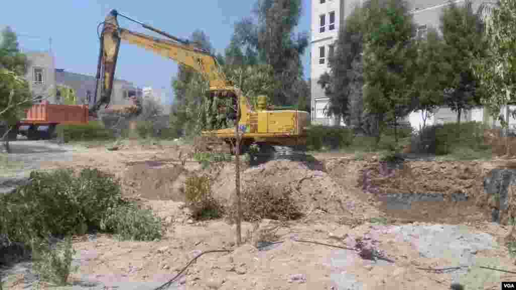 تخریب فضای سبز توسط شهرداری بوشهر برای خانهسازی عکس: پروریان(ارسالی شما)