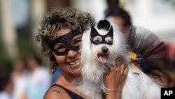 Brazil Carnival Dogs