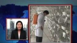 VOA卫视(2013年5月2日 第一小时节目)