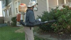 West Nile Surge Keeps Exterminator Busy