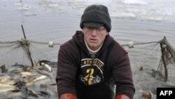 Розробка золотого родовища на Алясці ставить під загрозу місцеву флору і фауну