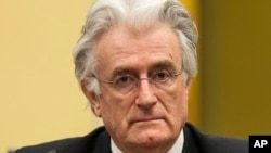 Former Bosnian Serb leader Radovan Karadzic at the courtroom of the U.N. Yugoslav war crimes tribunal. (File)