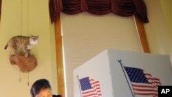 تهدید جمهوریخواهان به دیموکرات ها در انتخابات ایالات متحده