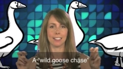 English in a Minute: Wild Goose Chase