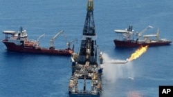 英国石油巨头BP公司去年在墨西哥湾发生漏油事故(2010年6月25号资料照)