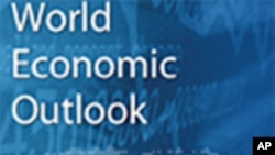 International Monetary Fund Raises Growth Forecast