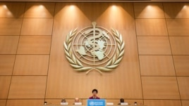 WHO Director-General Margaret Chan is seen speaking at the World Health Assembly in Geneva in this May 21, 2012, file photo.