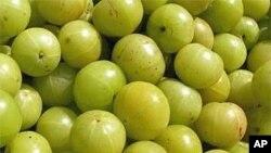 Indian Gooseberry, or Amla