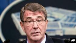 애슈턴 카터 미 국방부 장관 (자료사진)