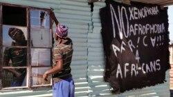 Ingxoxo Esiyenze Lodabuka Kwele South Africa