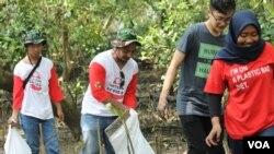 Para relawan memunguti sampah plastik di sekitar tanaman mangrove di sekitar muara sungai Wonorejo, Surabaya (Foto: VOA/Petrus)